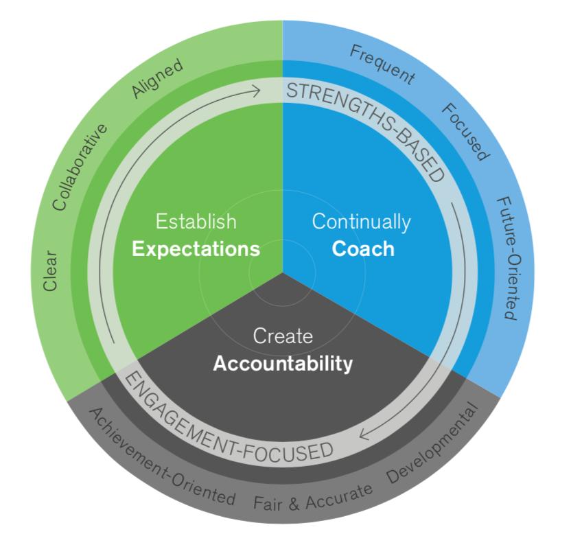 Gallup Performance Development process